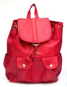 Alice Designer {bkp 246} 2.5 L Backpack
