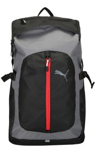 0d39aa23a4 Puma Apex Backpack 17 L Laptop Backpack Grey Best Price in India ...
