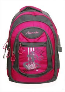 Attache Stylish School Bag (Pink & Grey) 30 L Backpack