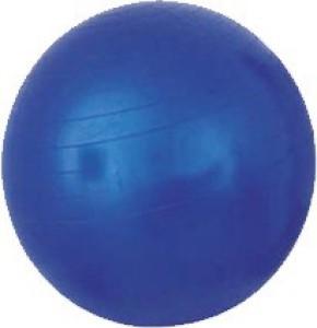 Acco 55 cm Gym Ball