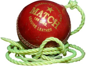 Port MATCH Cricket Ball -   Size: 5