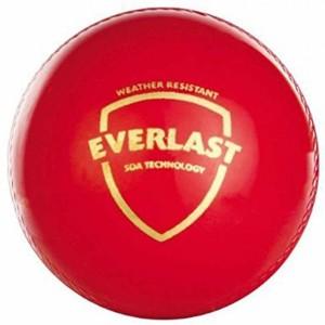 SG Everlast Cricket Ball -   Size: 3