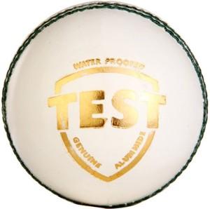 SG Test White Cricket Ball