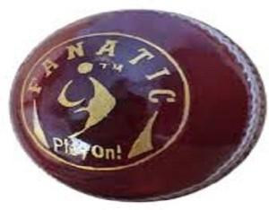 SM Fanatic Cricket Ball -   Size: 2.5