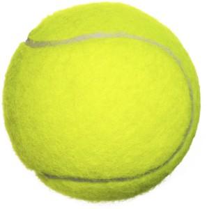 BSM CRICKET TENNIS BALL Cricket Ball -   Size: 6