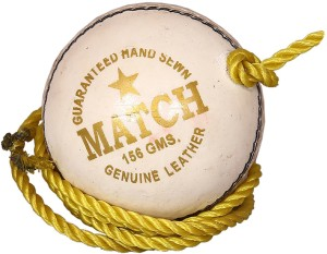 SEGA LEATHER MATCH PRACTICE Cricket Ball -   Size: 5