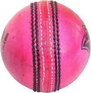 THREE WICKETS Panther Cricket Ball -   Size: Full