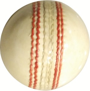 Whimsical Sports Leather Ball- Pack Of 2 Cricket Ball -   Size: 5