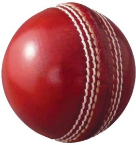 Whimsical Sports Swift Cricket Ball -   Size: 5