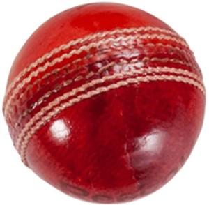 Reebok County Cricket Ball -   Size: 7