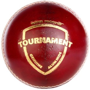 SG Tournament Cricket Ball