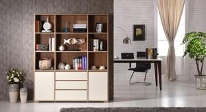 Urban Ladder Iwaki Engineered Wood Open Book Shelf