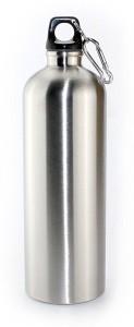 Ace Mettalic Silver Sports 750 ml Bottle