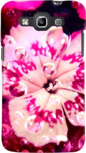 PrintVisa Back Cover for Samsung Galaxy Quattro I8552