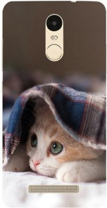 Casotec Back Cover for Xiaomi Redmi Note 3