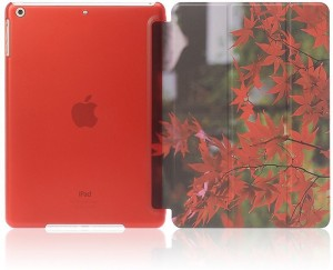 Go Crazzy Flip Cover for Apple iPad air /iPad 5