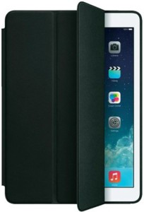 Hitzbluemint Flip Cover for Apple iPad Air 2