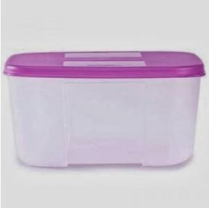 Tupperware FreezerMate  - 700 ml Plastic Food Storage