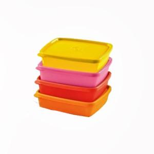 Tupperware  - 250 ml Plastic Food Storage