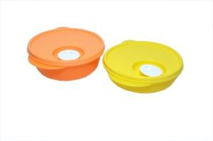 Tupperware  - 600 ml, 400 ml Plastic Multi-purpose Storage Container