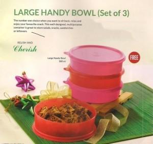 Tupperware 500 Ml Plastic Food Storage Pack Of 4 Red Pink Best Price