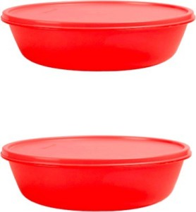 Tupperware SS Bowl  - 1 L Polypropylene Multi-purpose Storage Container