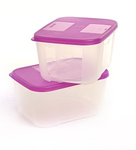 Tupperware Freezer Mate S  - 700 ml Plastic Food Storage