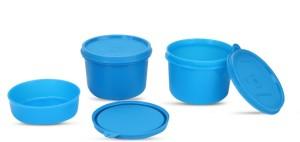 Signoraware Executive Lunch Box (Medium) with Bag  - 180 ml, 450 mlx2 Plastic Food Storage