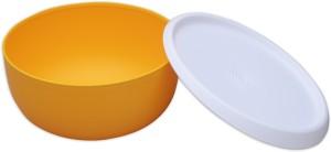 Tupperware  - 1.3 L Plastic Multi-purpose Storage Container