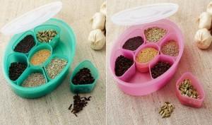 Your Choice Pink & Green (Pack of 2) Spice/ Masala/ Dry Fruit Box  - 1750 ml Plastic Food Storage