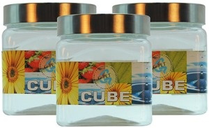 GPET Cube Pet Container with Steel Cap - Set of 3  - 500 ml Plastic Food Storage