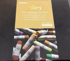 Mungyo Round Shaped Gallery Artists' Handmade Soft Pastel - Portrait shades Washable Crayons