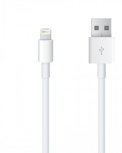 Apple MD818ZM/A Lightning to USB Cable (1m) Lightning Cable