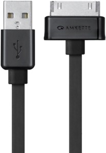 Amkette Charge/Sync 30 Pin to USB USB Cable