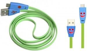 ARI 2017 USB Cable