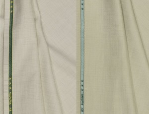 8768af749 Raymond Cotton Polyester Blend Self Design Trouser Fabric Un ...