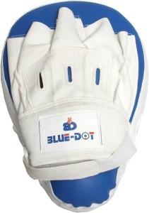 BlueDot sports Focus Pad