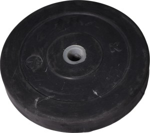 Royal 7.5kg_1pc_Low_Cost_black_plates_For_22mm_Rod Weight Plate