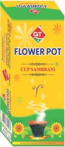 GT FP natural pure sambrani Incense Sticks10 Sticks per Box