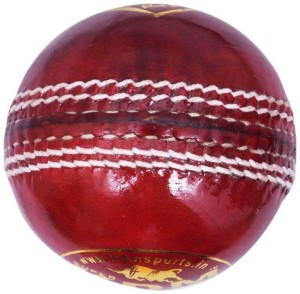 Sports Perfect (Single Knee Cap Free) Prince Leather Cricket Ball -   Size: 7