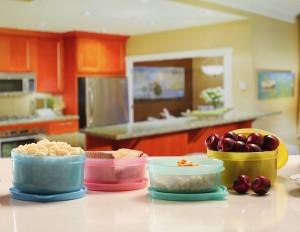MasterCook Round  - 200 ml, 300 ml Plastic Food Storage