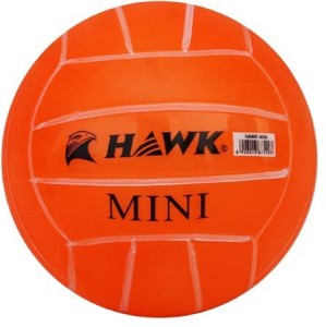 Hawk Mini Playball Pack of 2 Volleyball -   Size: 1