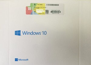 cost of windows 10 professional in india