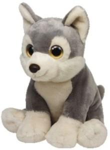TY Wild Wild Best Rocky Plush - Mini Husky  - 8 inch