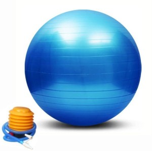 HOMMER Gym Ball 65 cm Gym Ball