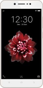 Vivo Y66 (Crown Gold, 32 GB)