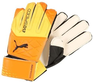 PUMA evoSPEED 5.5 ( 8 ) Football Gloves (M, Multicolor)