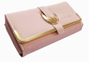 28a8e91b7210 SAMCO FAS Girls Pink Canvas Wallet 15 Card Slots Best Price in India ...