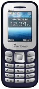 GreenBerry GB 312