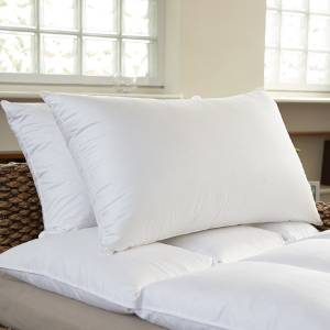 JDX Solid Bed/Sleeping Pillow Pack of 2